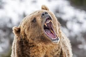yawn7