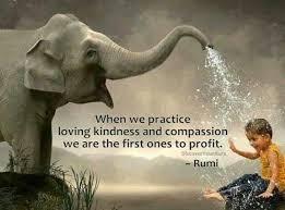 Kindness elephant