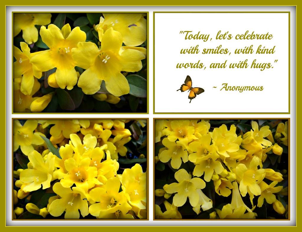 kind smiles