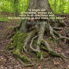 Kindness roots