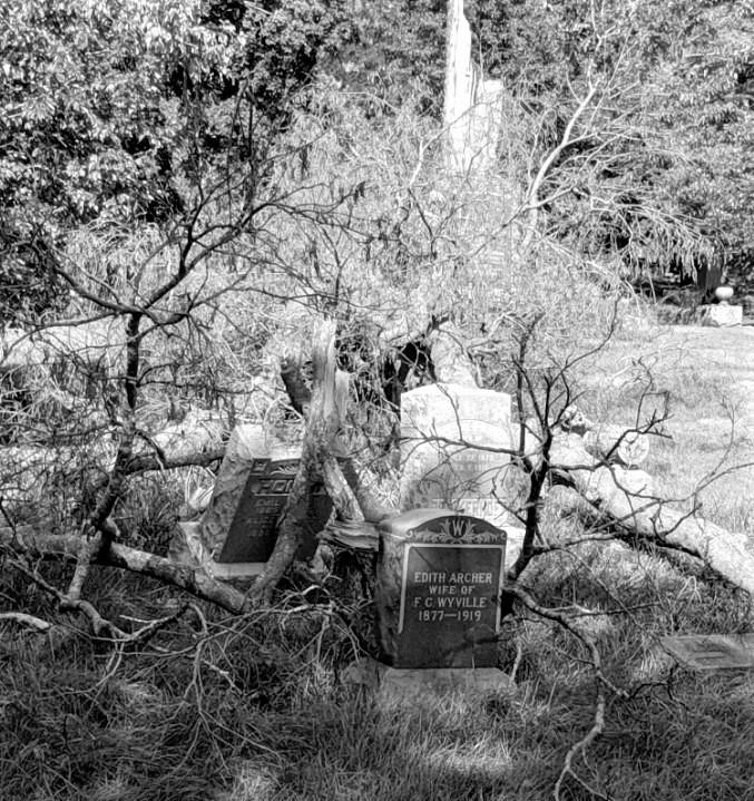 B&W grave