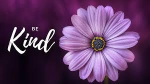 kind flower