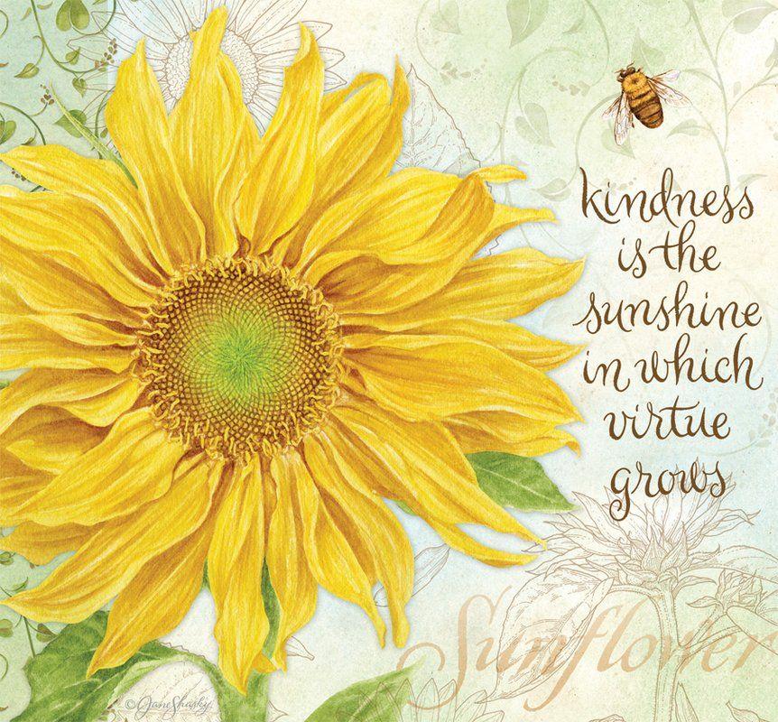 kind sunflower