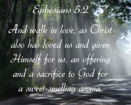 Ephesians 5 v 2