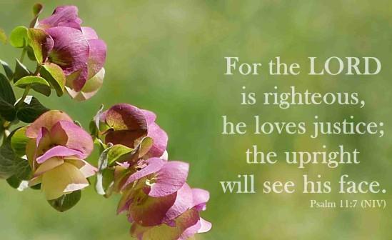Psalm 11 7